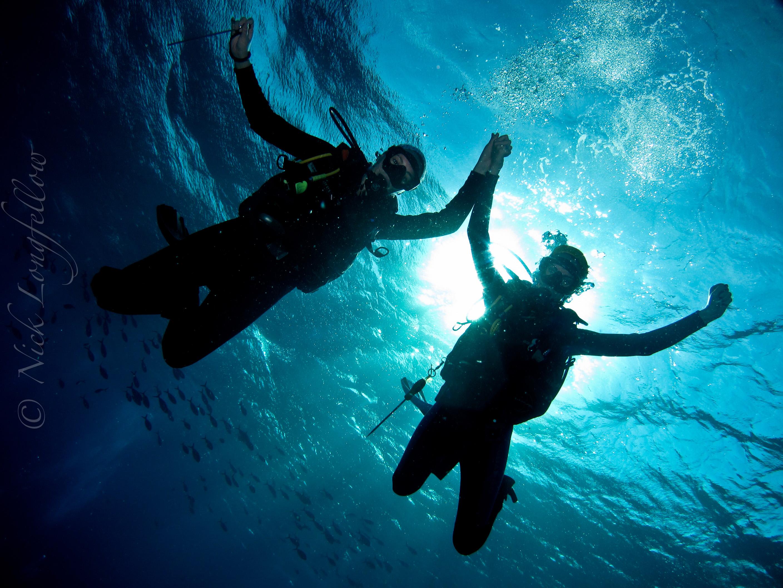 Padi dive courses in komodo - Dive dive dive ...